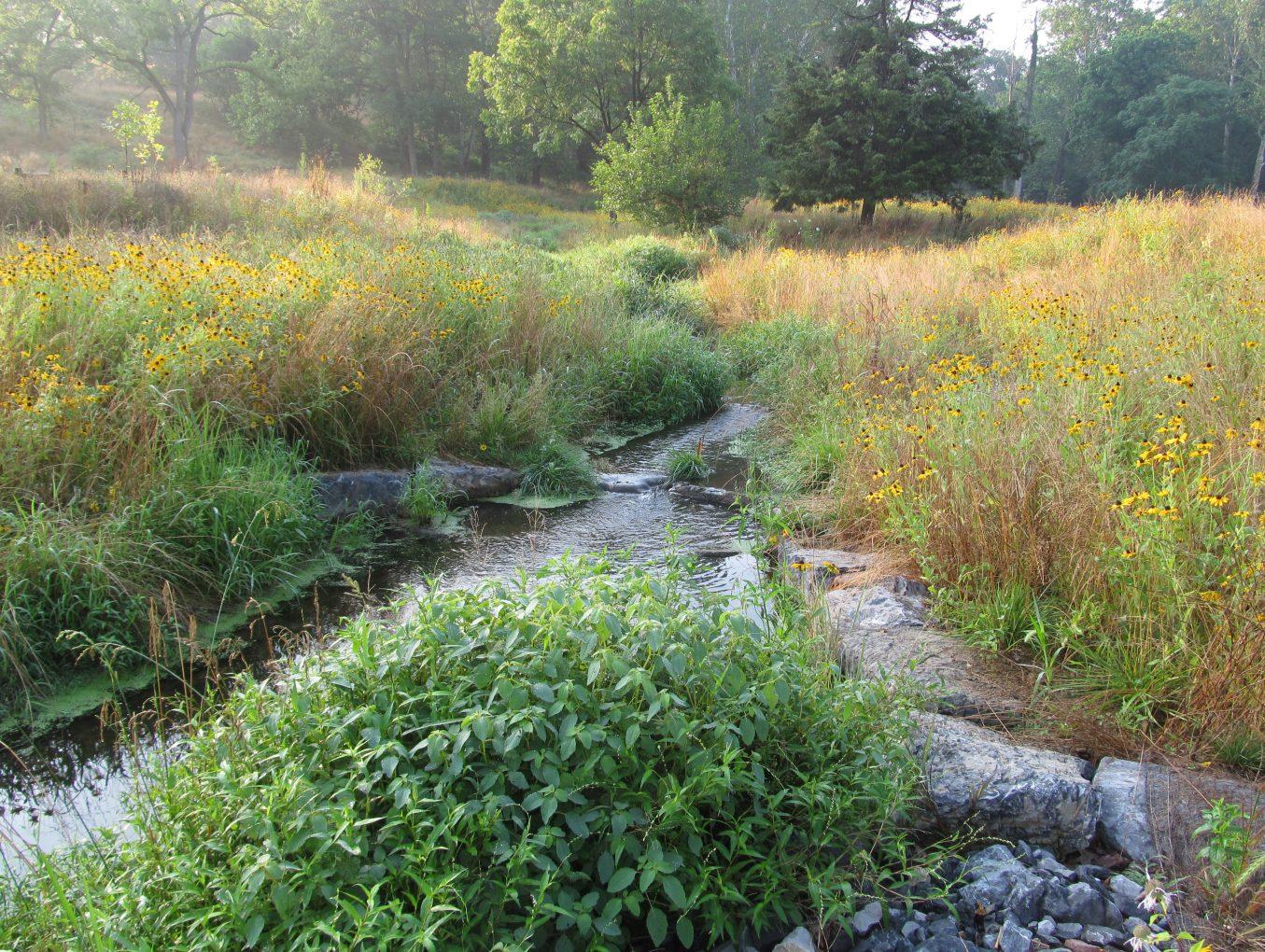 Yellow Breeches Creek Stream Restoration