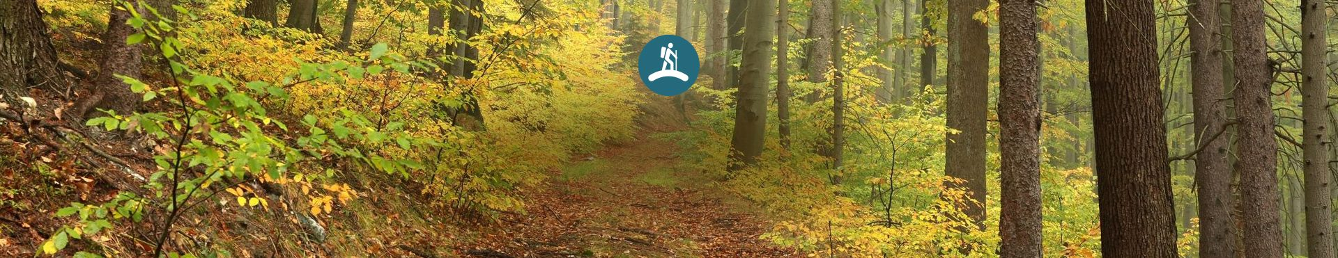 Trails and Recreation