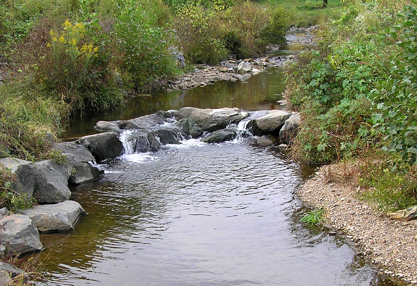Angelica Park Restoration